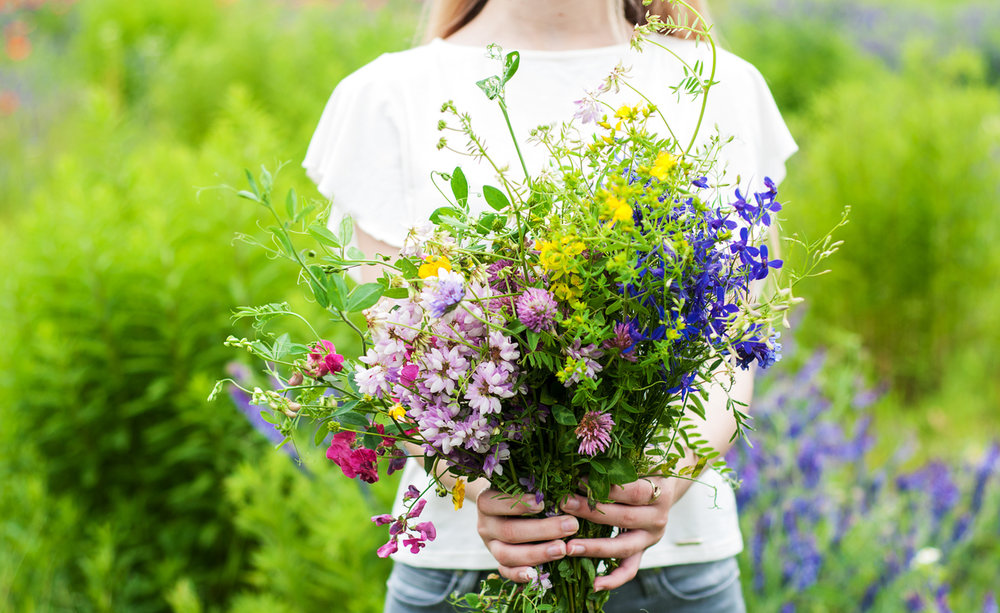 Zahrada je místo,   kde trhám květy pro radost.