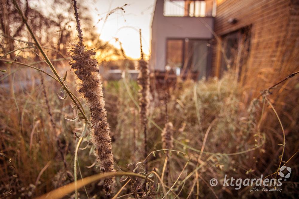zahrada Štramberk, ktgardens, podzim, moderní zahrada