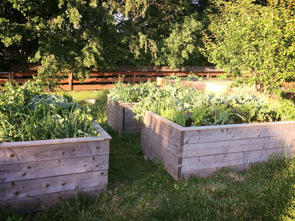vítání léta v Trojanovicích, ktgardens, zahrada, vyvýšené záhony