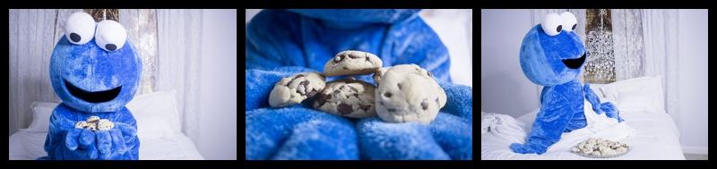 Cookie Monster Boudoir 4.jpg