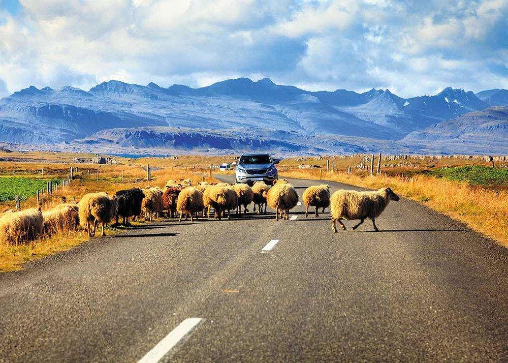 Iceland roads.jpg