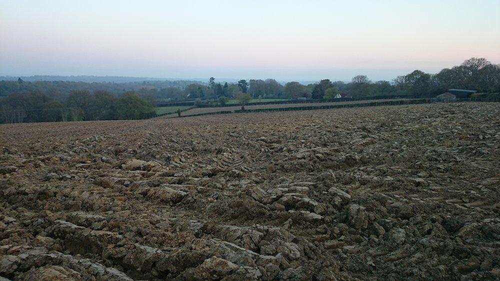 April 2015 - Ploughed for planting
