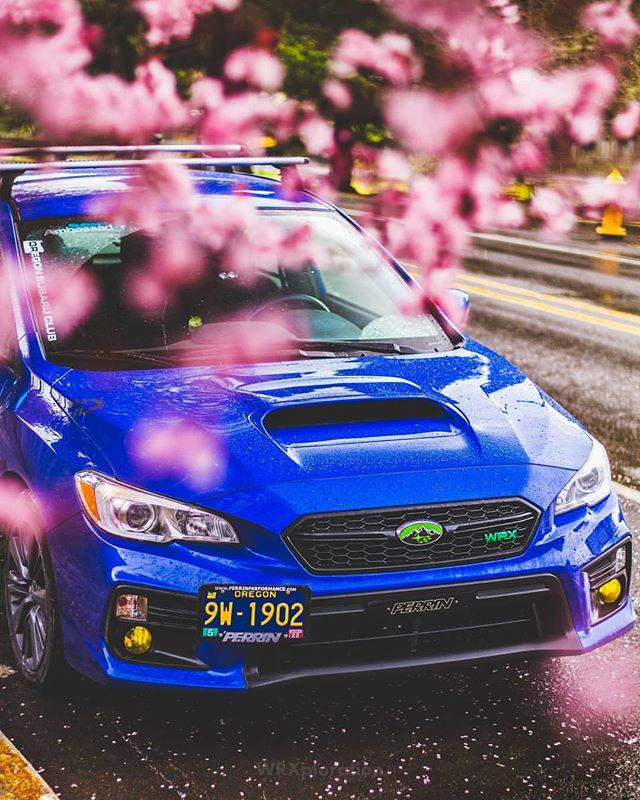 Spring is quietly springing here in the PNW.  What's your favourite season and why? ---------------------------------------------------------- Member: 🏎: @wrxploration ----------------------------------------------------------- Sponsored by: @wilsonville_subaru  @gofsr @blackvueofficial ----------------------------------------------------------- Use our tag! #joinOSC #oregonsubaruclub Checkout our partner: @subi.gram ----------------------------------------------------------- If you would like to be featured, DM or e-mail submit@oregonsubaruclub.com ----------------------------------------------------------- #subaru #wrxsti #subiegang #subieporn #oregon #oregonsubaru #oregonsubaruclub #oscproud #wrx #sti #brz #pnw #spring #picoftheday @srtusa @subaru_usa