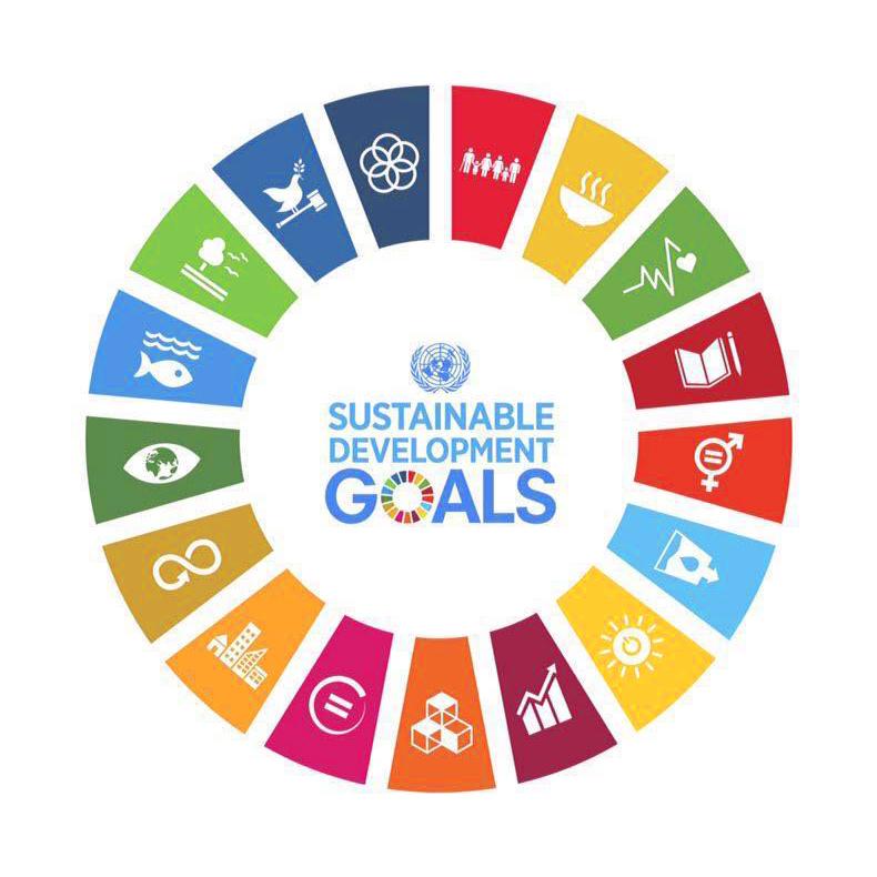 APSI_SDGs.jpg