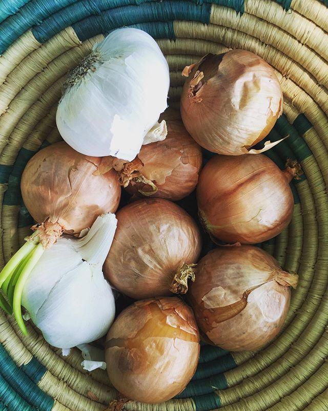 *insert Onion + Garlic emojis*⠀ shoutout to @sundaysuppersphilly for donating a handful of kitchen essentials: onions, garlic, peppers + leeks! thank you for having always supported the OMK mission + dream.⠀ -⠀ Sunday Suppers encourages + promotes mental, physical + social wellness through creating a space where families come to cook + eat dinner together. family meals are so important to community building + preserving culture. if you are interested in volunteering visit sundaysuppersphilly.org⠀ #community #communitybuilding #familydinner