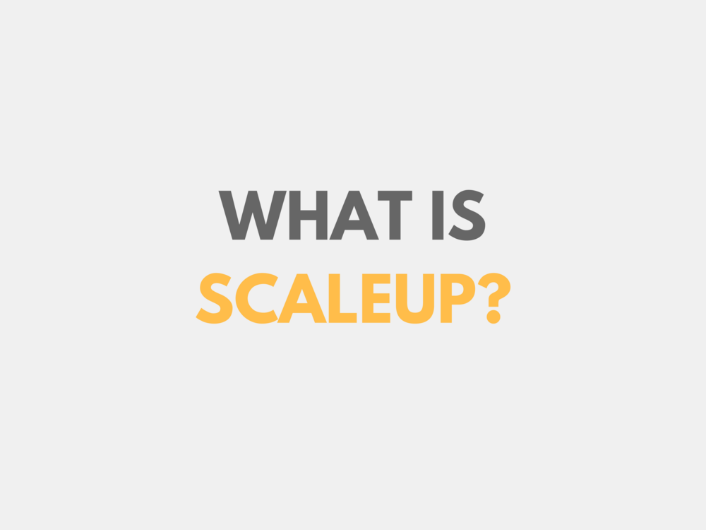 What is ScaleUP USA Accelerator?
