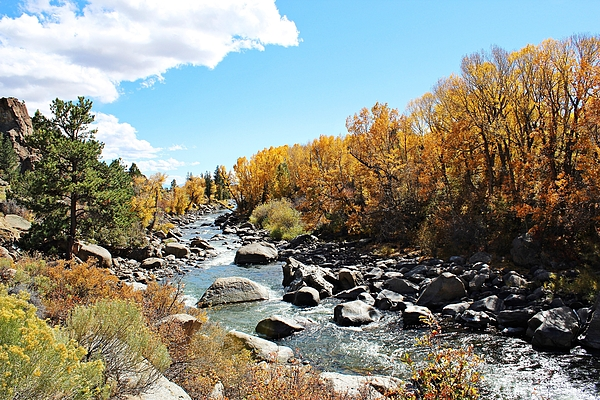 The Arkansas River by Joseph Holub - http://central-colorado-images.pixels.com/