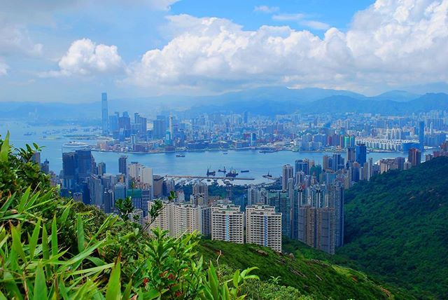 Today's Cheap flight Deal! Chicago/NYC - Hong Kong. $500s roundtrip. When: Feb - Apr. Sign up at www.cheaptravelbug.com to receive deals directly to your inbox! #travelbug #travelmore #travelplanning #travelgram #instatravel #tourism #aroundtheworld #ilovetravel #dailydeals #cheapflights #cheaptravel #traveldeals #cheapflightalerts #passportready #frequentflyermiles #cheapflightdeals