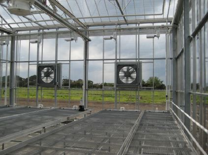 Mesh bottom greenhouses.JPG