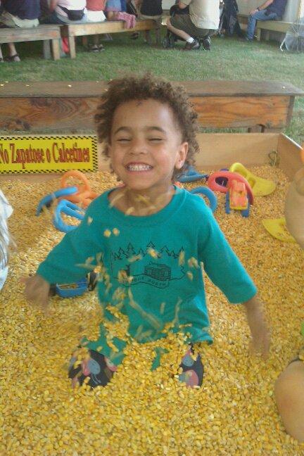 Tati in the corn.jpg