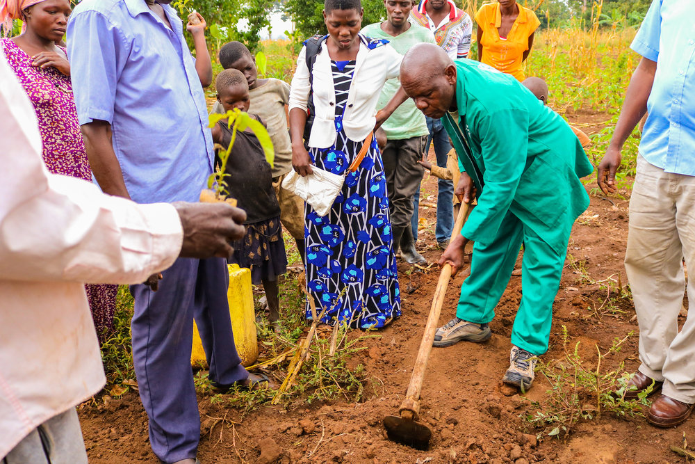 With the holes for their saplings prepared, the community gathered around to watch Alex and Abraham plant the first tree in their village.