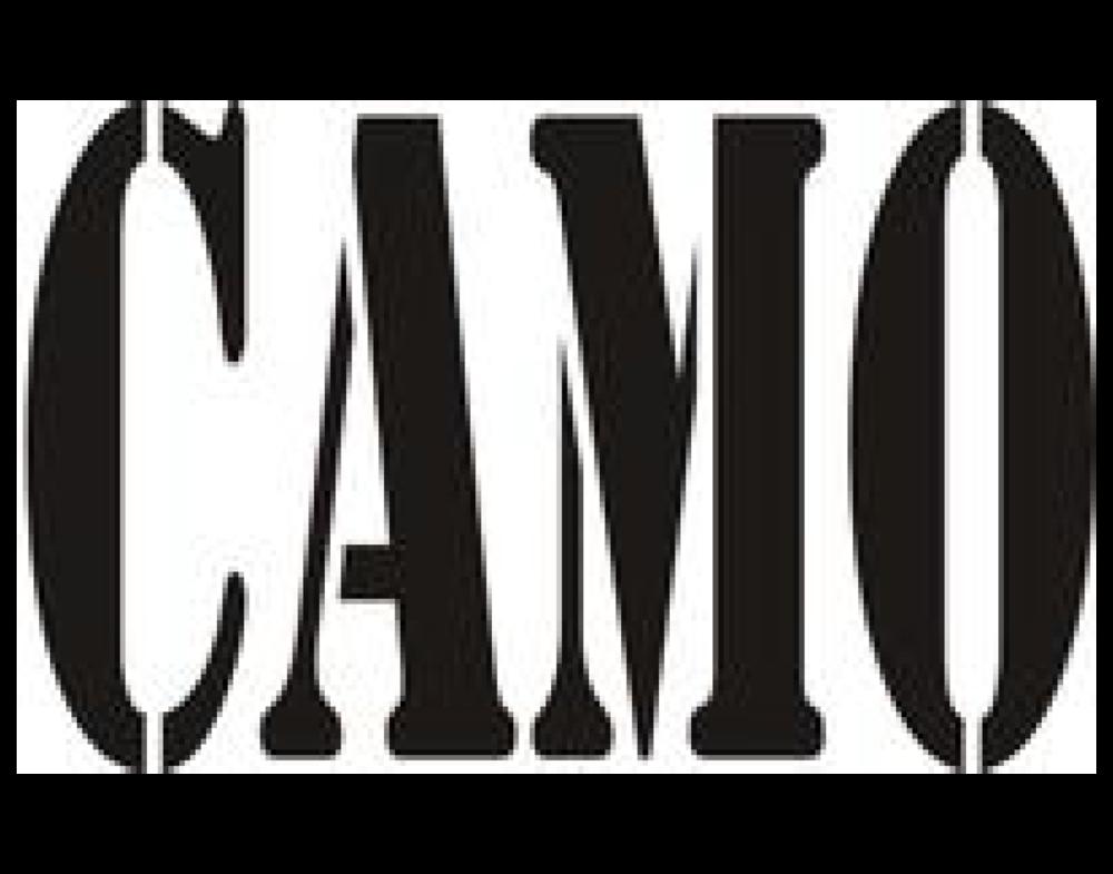 CAMO-logo.jpg