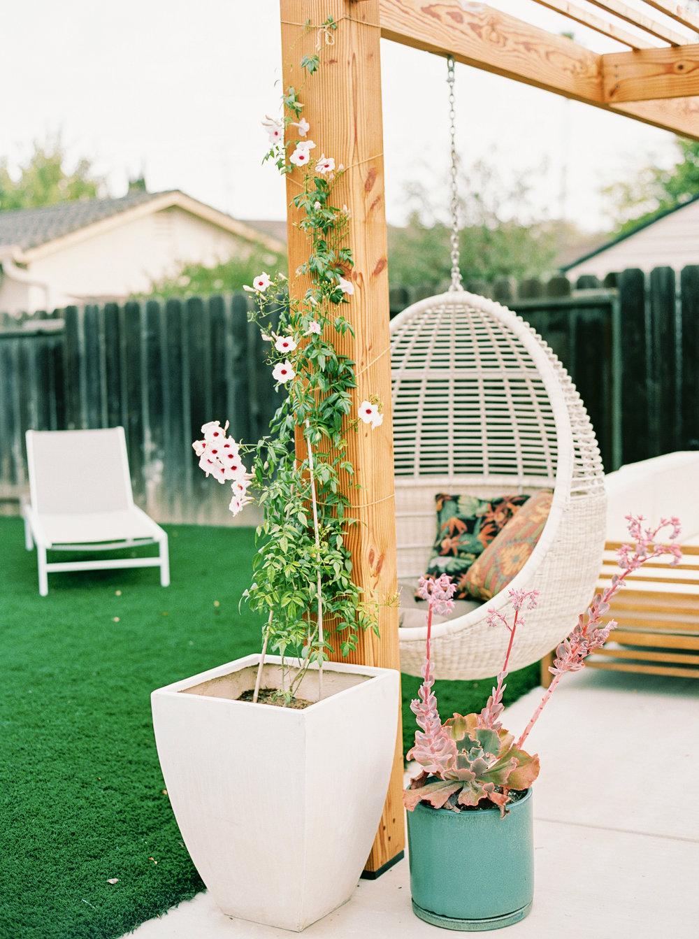 modern backyard-1.jpg