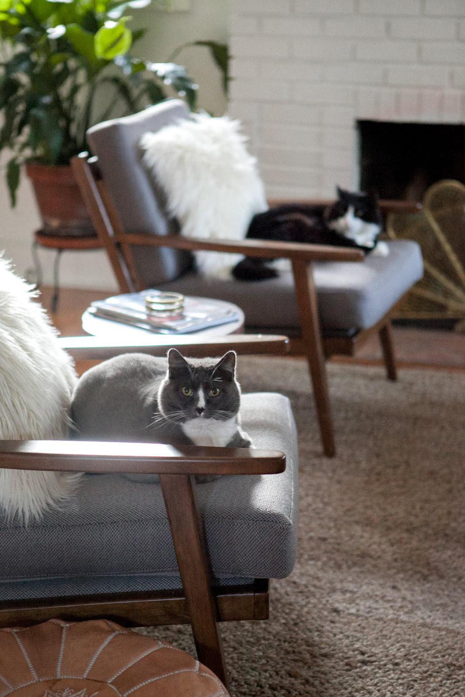 12_Design-Sponge-Jessica-Brigham-Living-Room.jpg