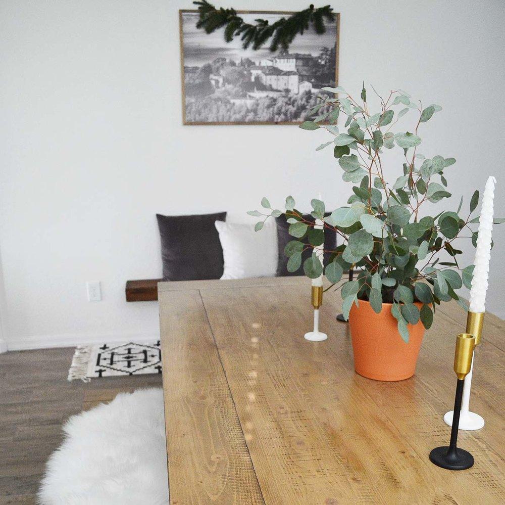 arizona-lifestyle-photoshoot-location-indoor-organic-luxe-11.jpg