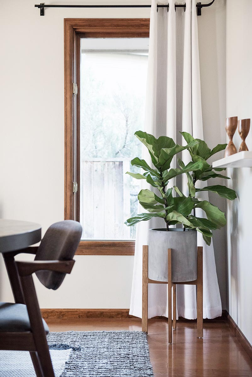 home-studio-denver-lifestyle-photoshoot-location-studio-rental-11.jpg