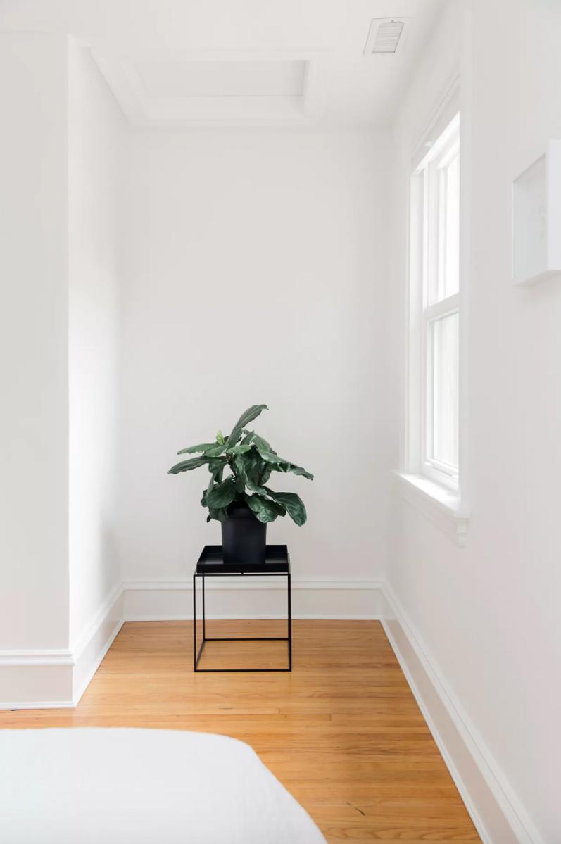 minimal-rowhouse_richmond-virginia-natural-light-photoshoot-location-22.jpg