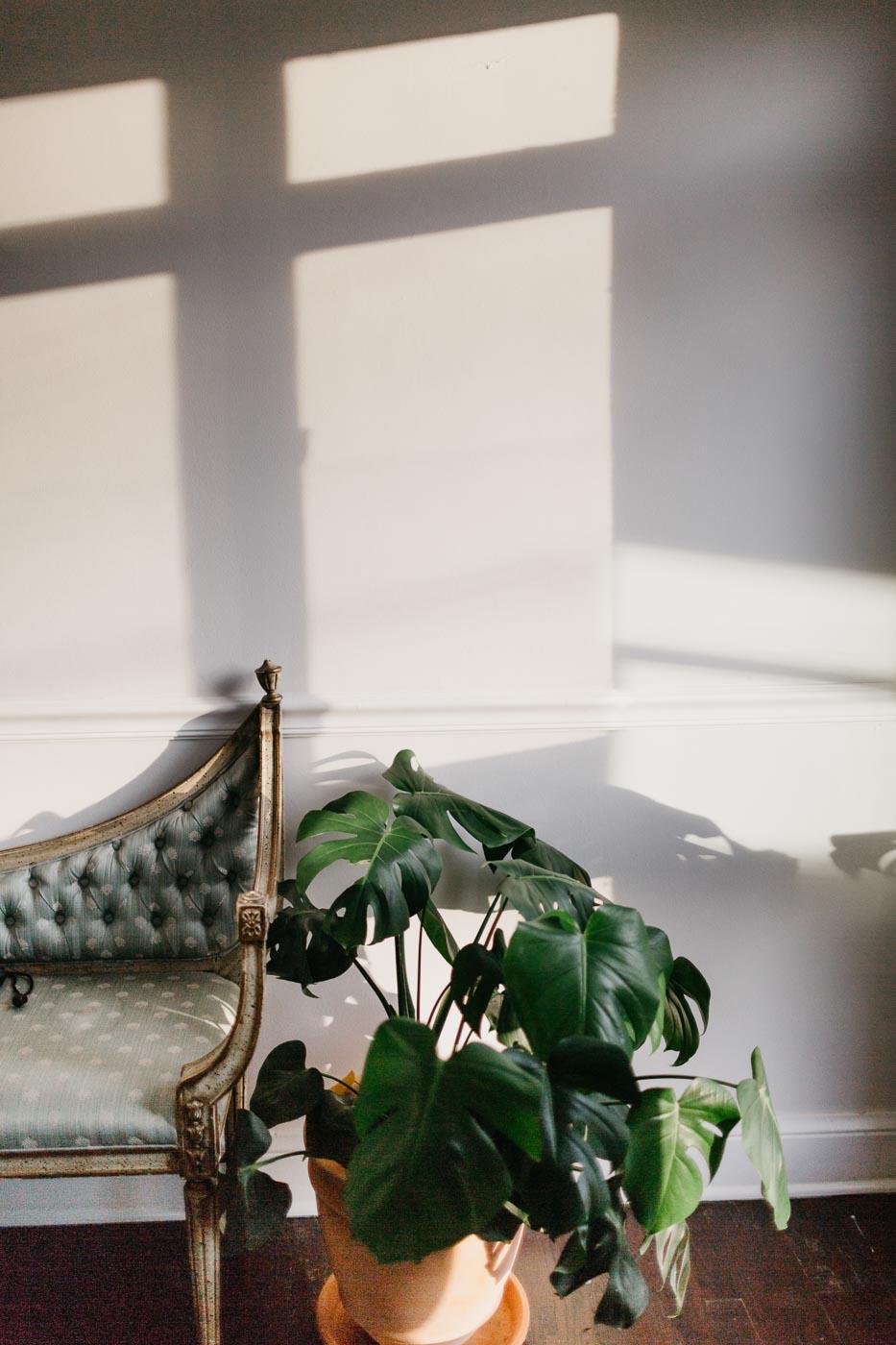 cozy-casa-nashville-tn-natural-light-studio-photography-ideas-lifestyle-photographer-photography-31.jpg
