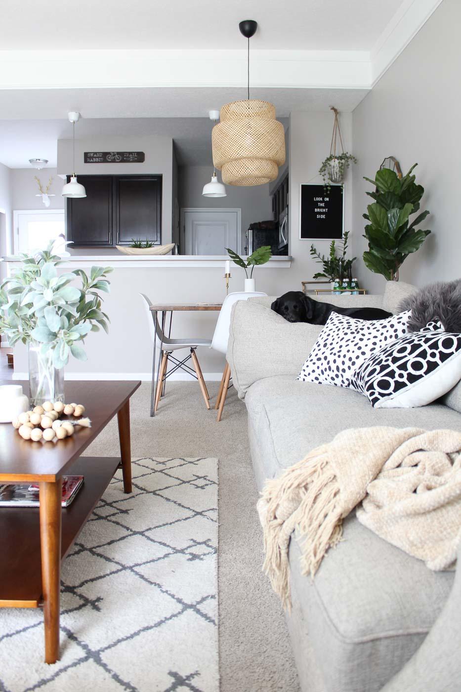 cozy-quarters-ohio-natural-light-photography-studio-lifestyle-photographer-25.jpg