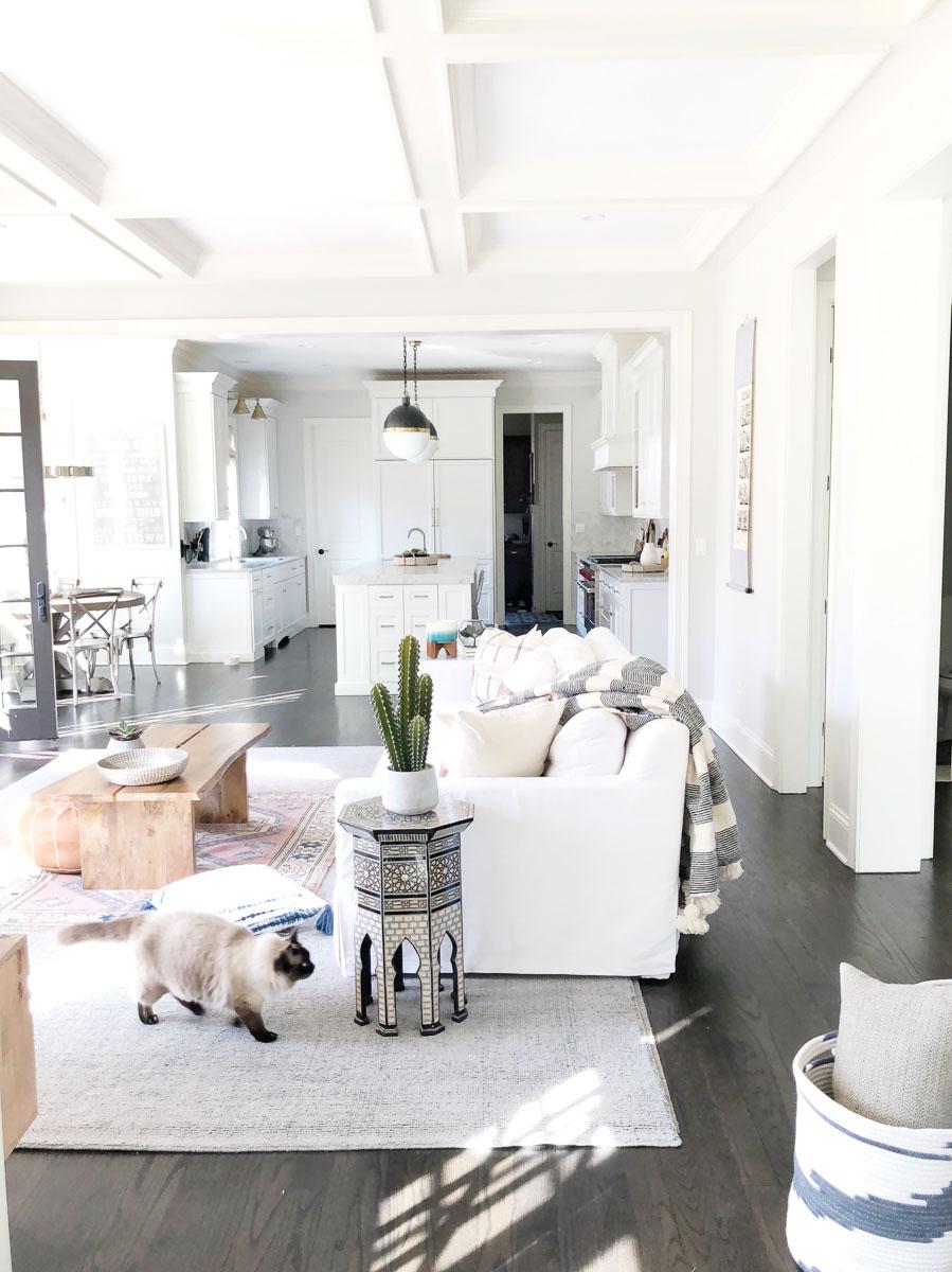 Contemporary-Charm-Illinois-natural-light-photography-studio-lifestyle-photo-ideas-indoor-photoshoot-location-25.jpg