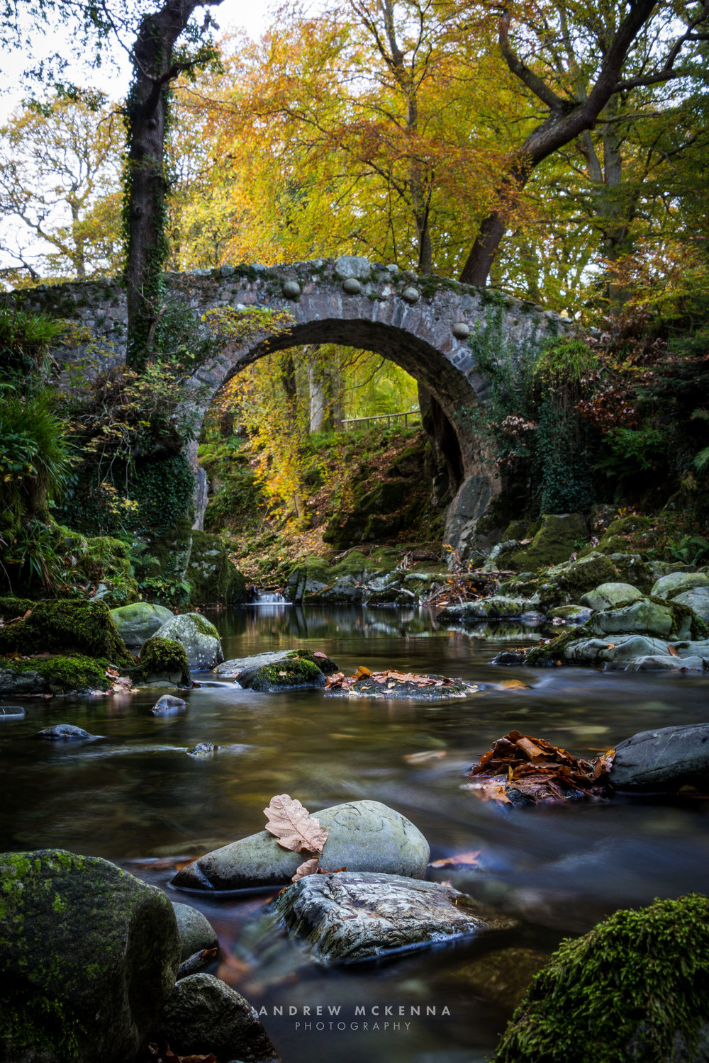 Foley's Bridge PHotogrpahy Tollymore Forest Park