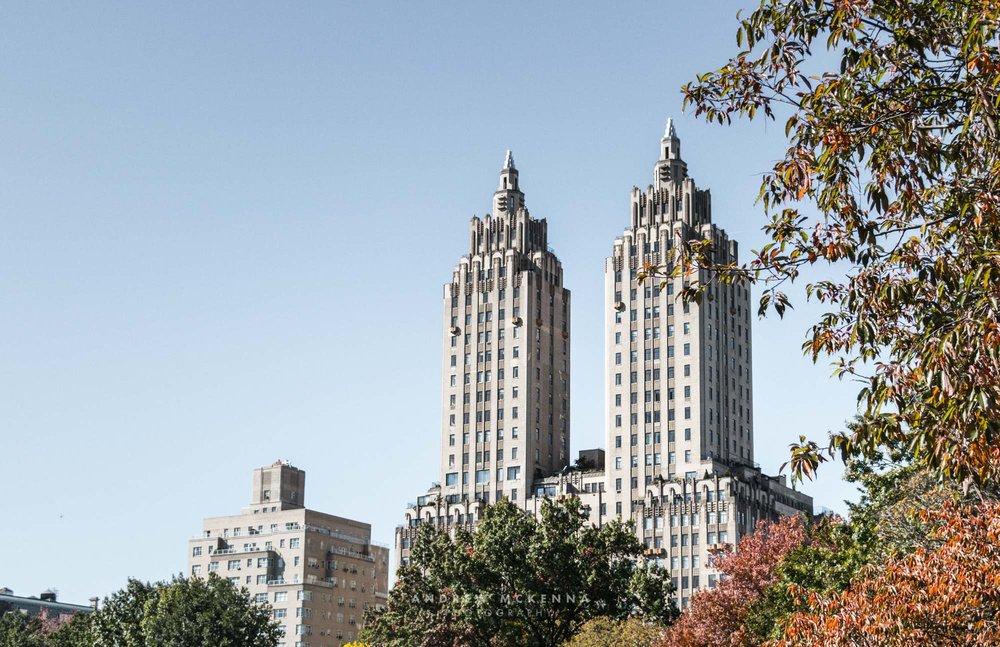 New York NYC Photographer Travel photographer Central Park