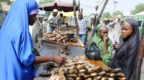 Image Source: June 12, 2015 BBC profile of Nigeria