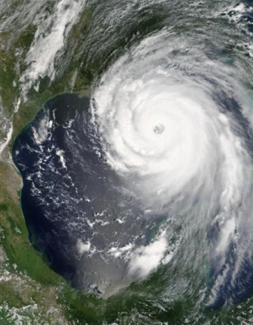 "Link to Wikipedia article on ""Hurricane Katrina"""