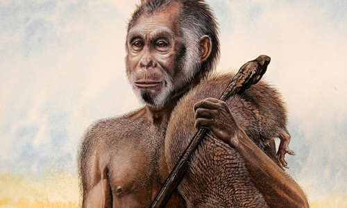 An artist's impression of how Homo floresiensis would have looked. Photograph: Peter Schouten/National Geographic