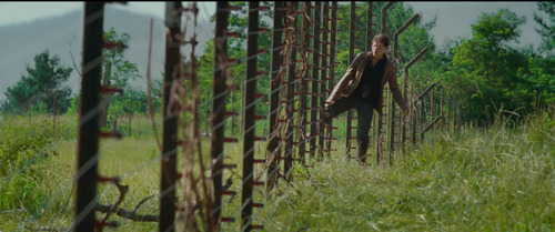 Katniss crossing the electric fence