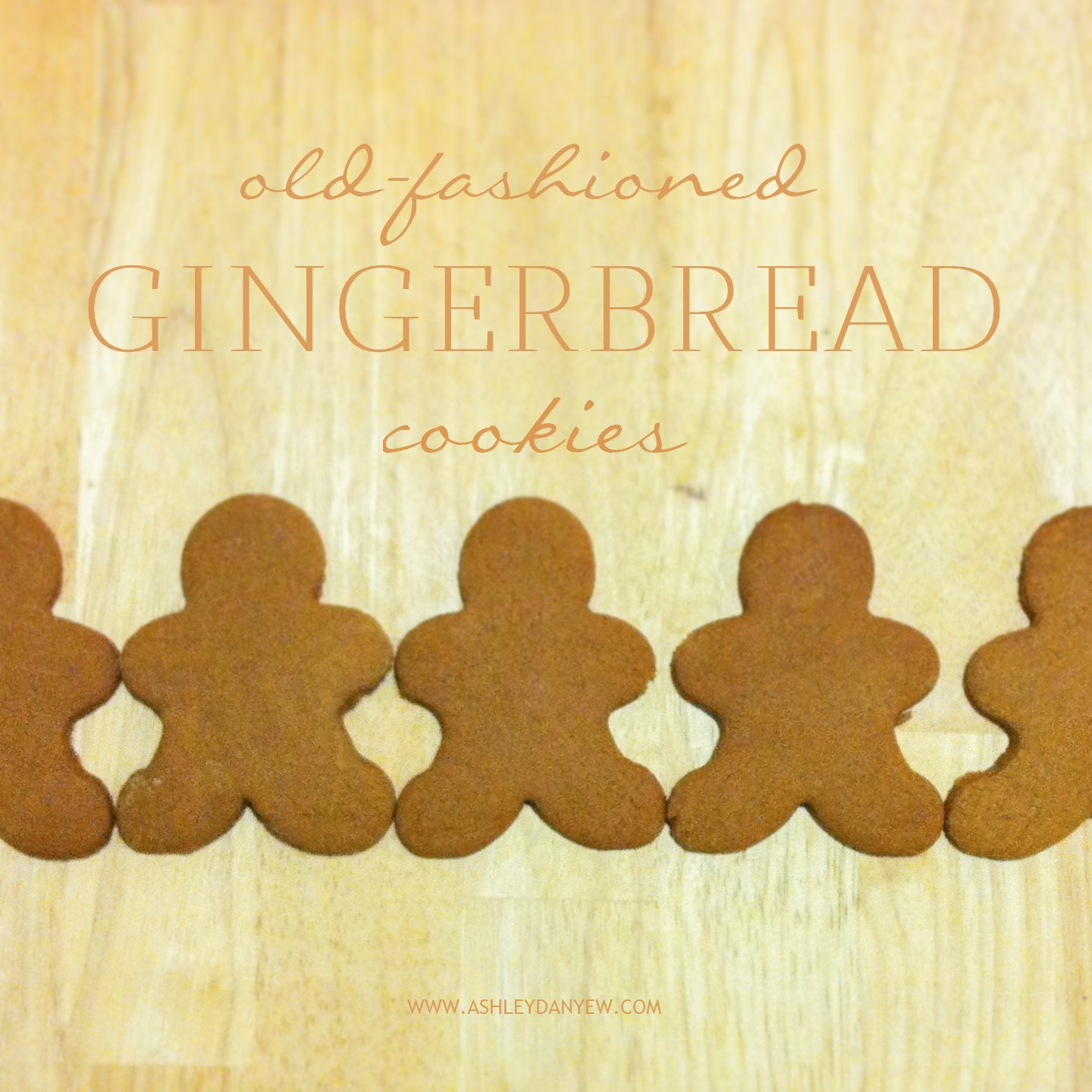 Ashley Danyew | Gingerbread