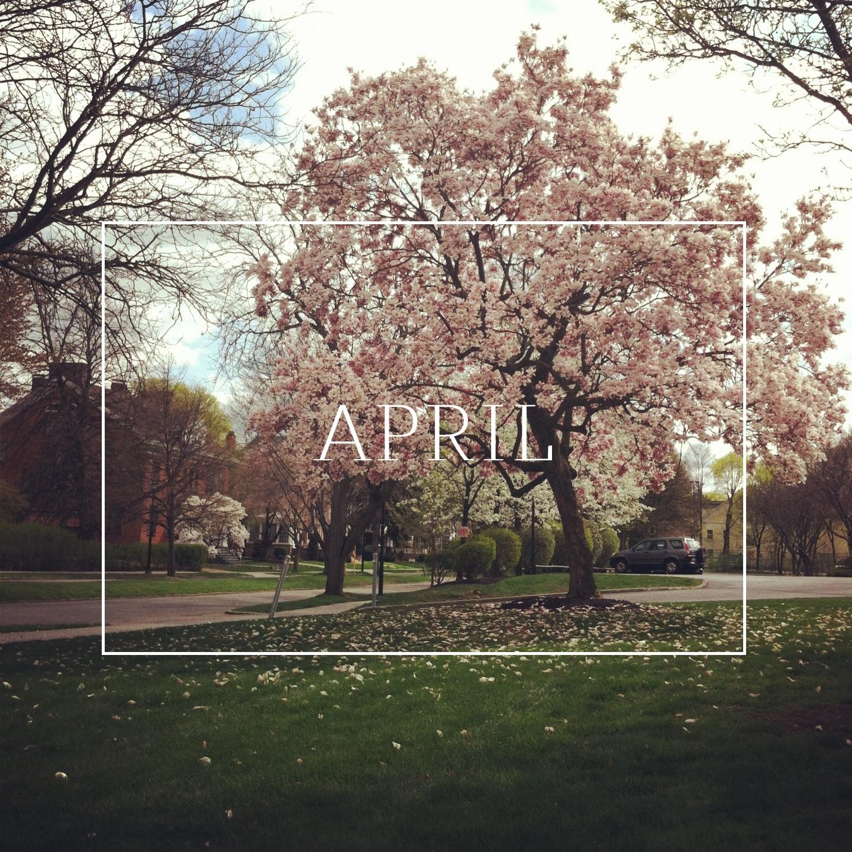 Ashley Danyew | April Goals
