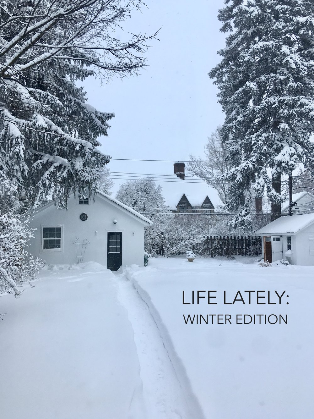 Life Lately: Winter Edition