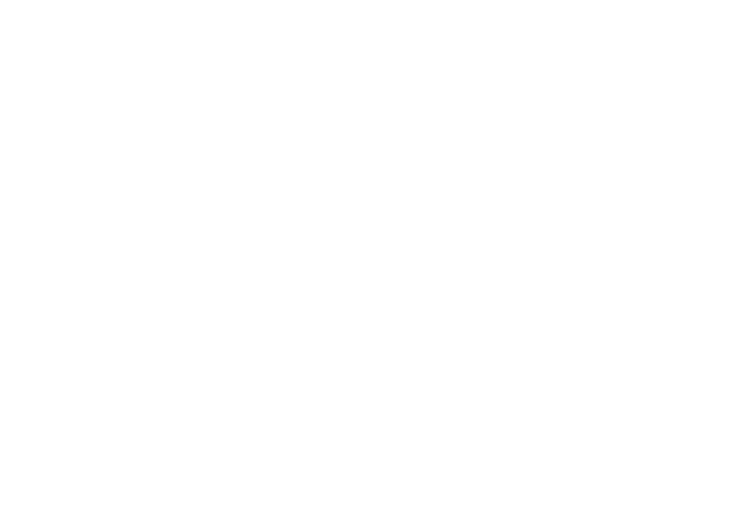 Gray Fox Real Estate
