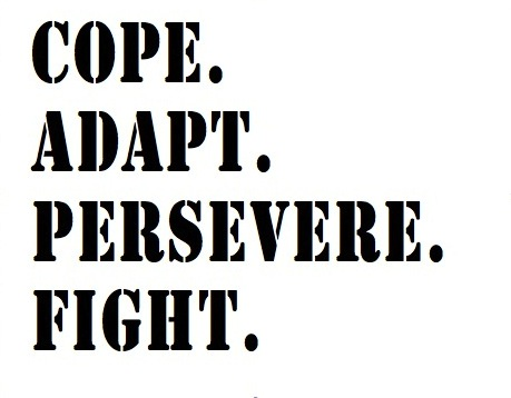 cope-adapt-persevere-fight1.jpg
