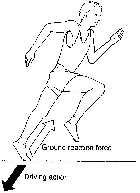 ground-reaction-forces-epicmartialartswordpresscom