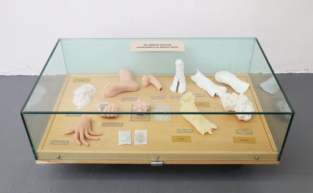 Type Specimen(2017)   silicon rubber, plaster, latex, paper, ceramics