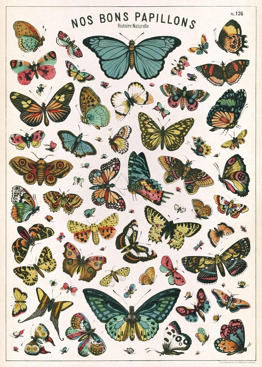 Butterfly Chart Wrap
