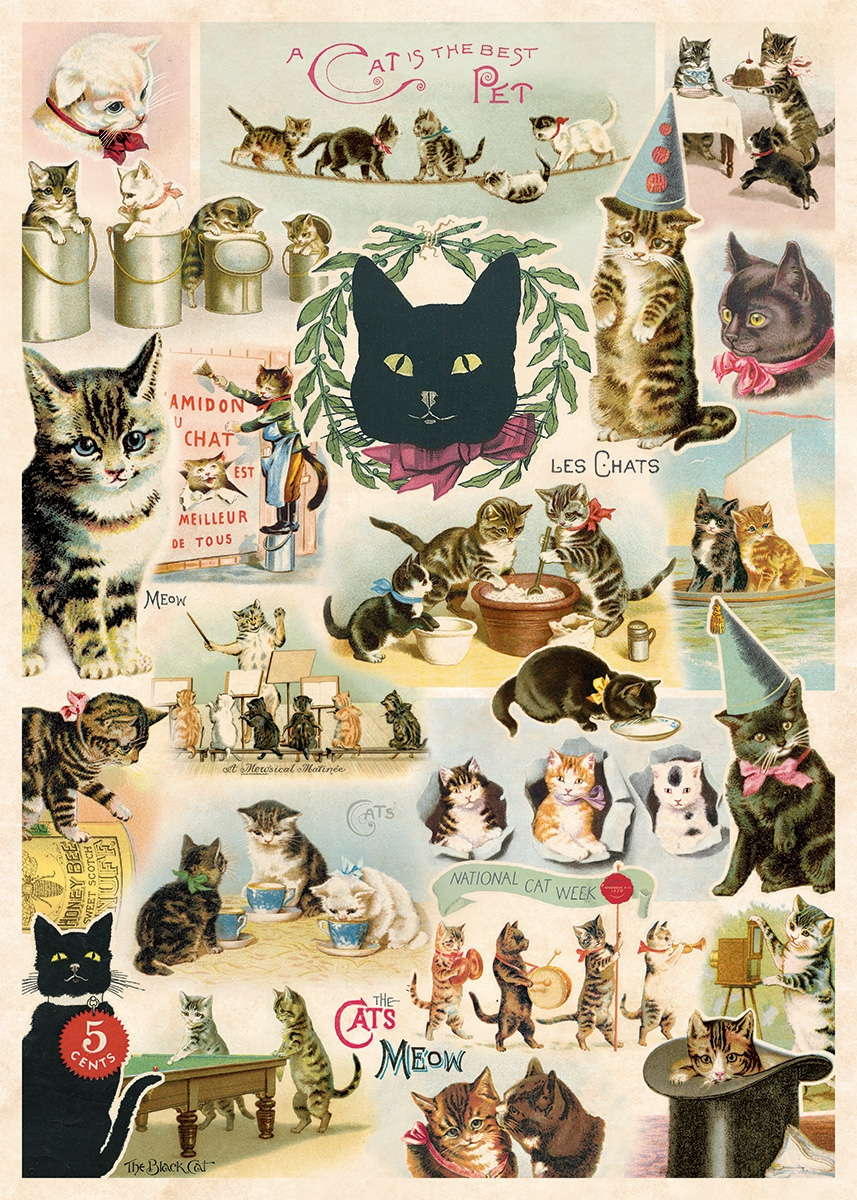 Cat Collage Wrap