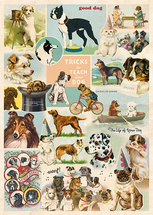 Dog Collage Wrap