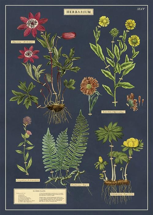 Herbarium Wrap
