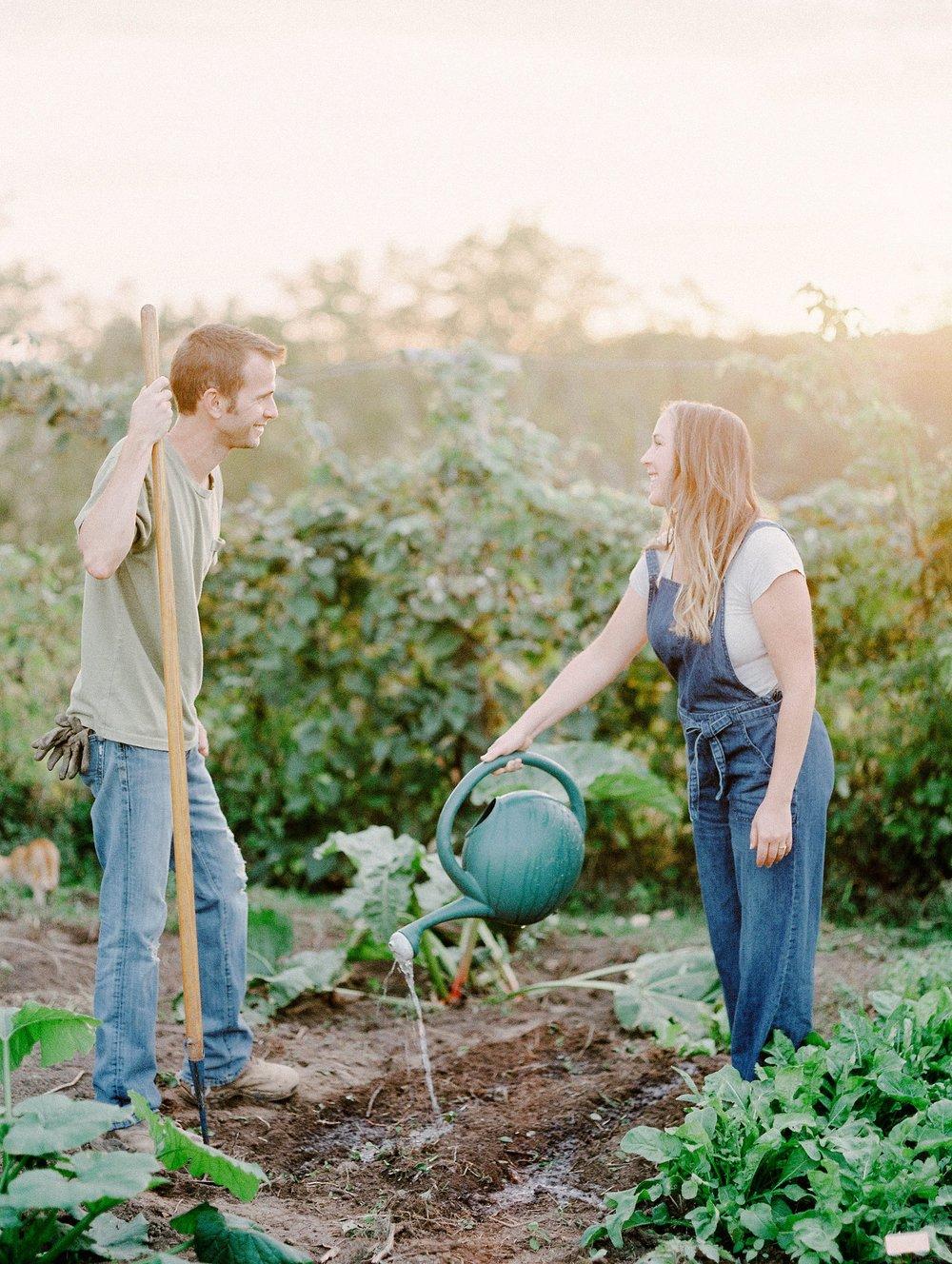 vegetablegardenmorganworley_0005.jpg