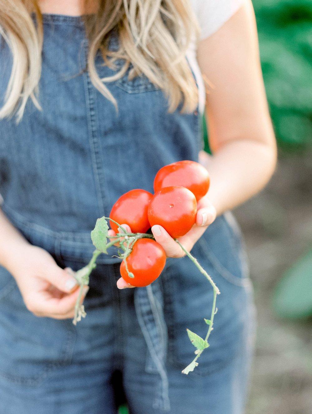 vegetablegardenmorganworley_0013.jpg