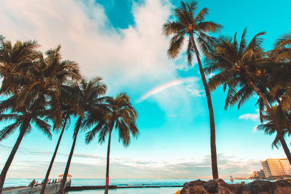 Hawaii Waikiki 2-2-2016-0862.jpg