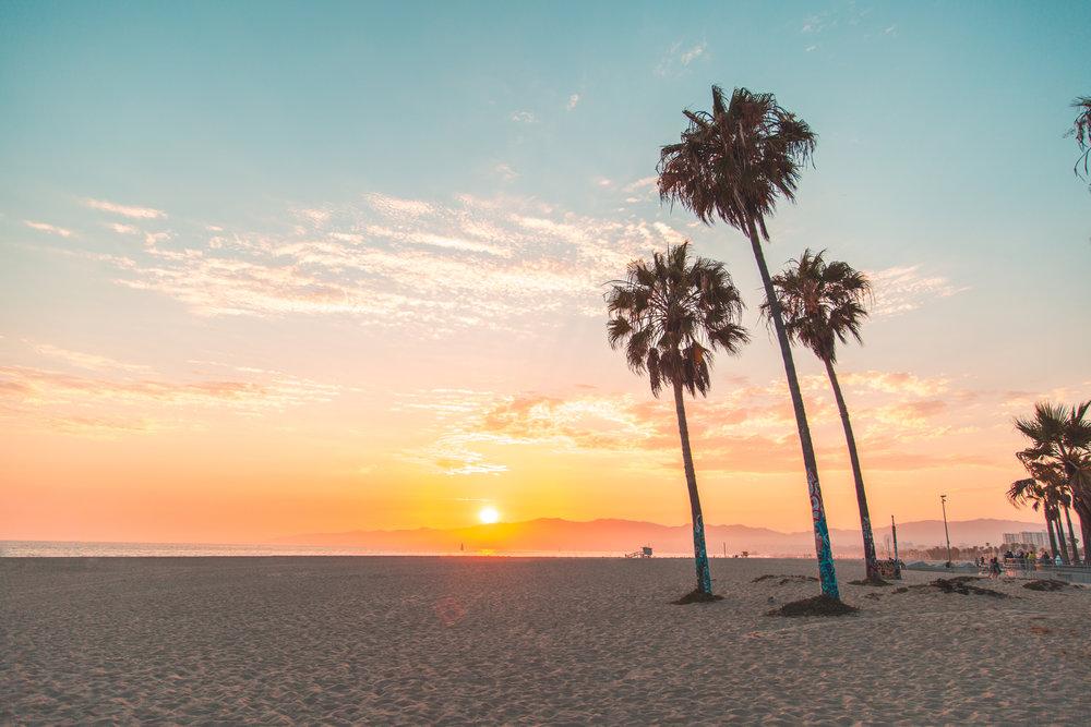 Venice Beach 7-5-2017-9695.jpg
