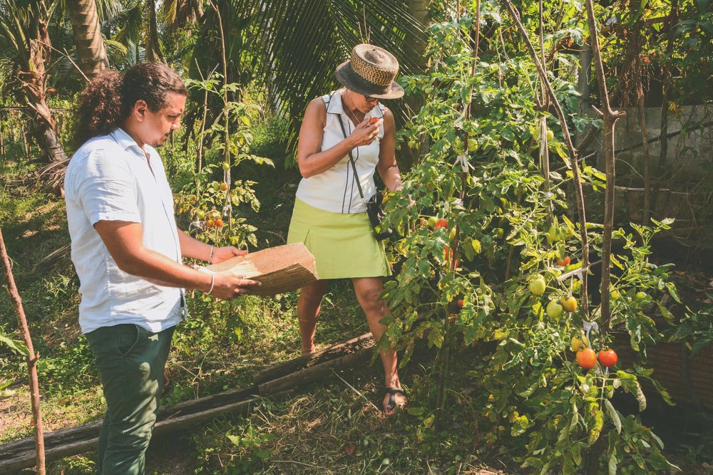 Farm to table Sri Lanka with Sk De Silva
