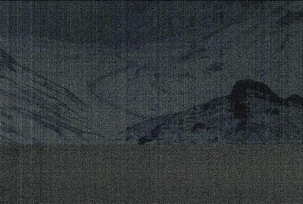 Svínadalur, 2013