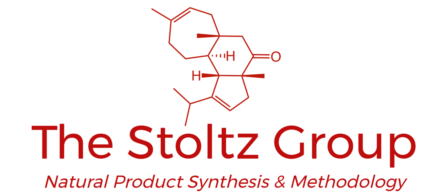 The Stoltz Group