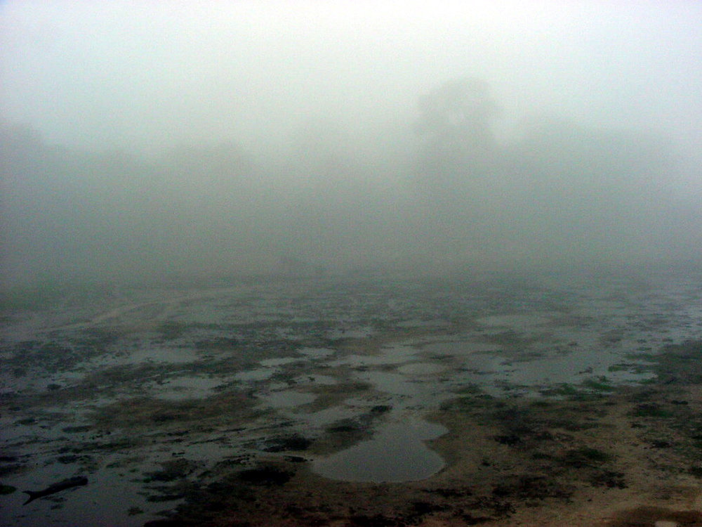 The Bai in Fog