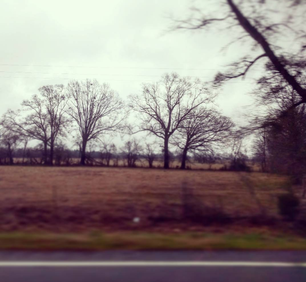 8:15am - Fitzpatrick, Alabama
